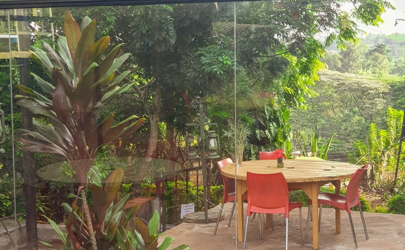 My Writing/Reading Spots: TheArbor