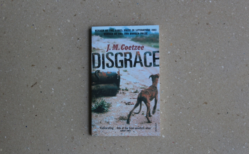 The Social and Political Tensions in South Africa, in 'Disgrace' by JMCoetzee